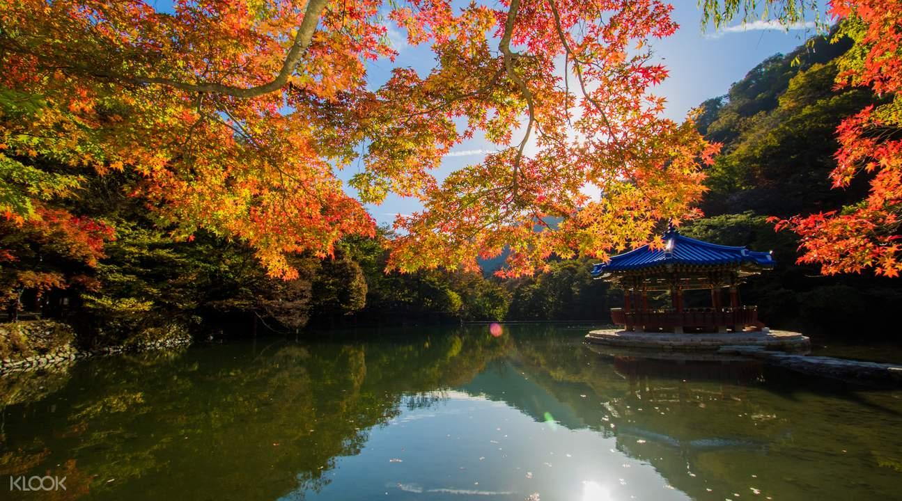 內藏山羽化亭的美景