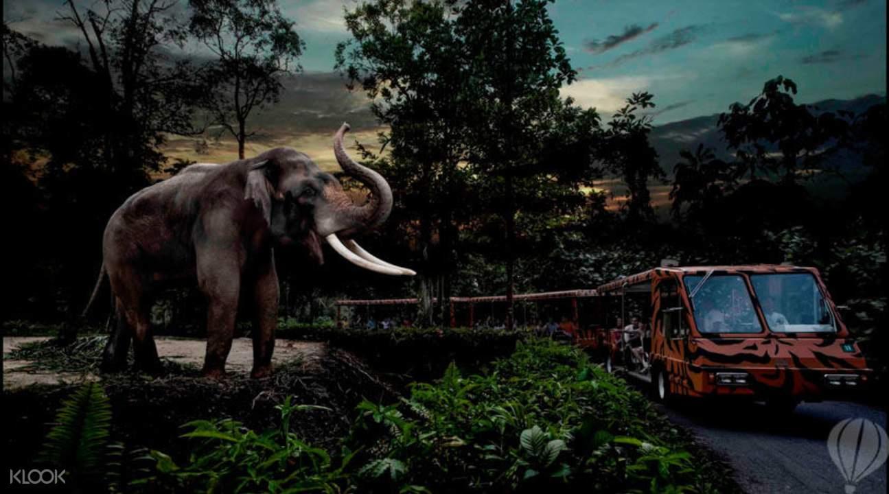 新加坡夜間動物園