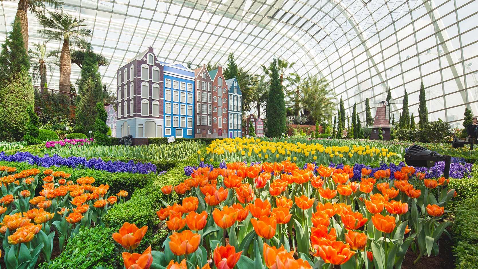 濱海公園的花芎有上千種花。相片來源:濱海公園官方網站。