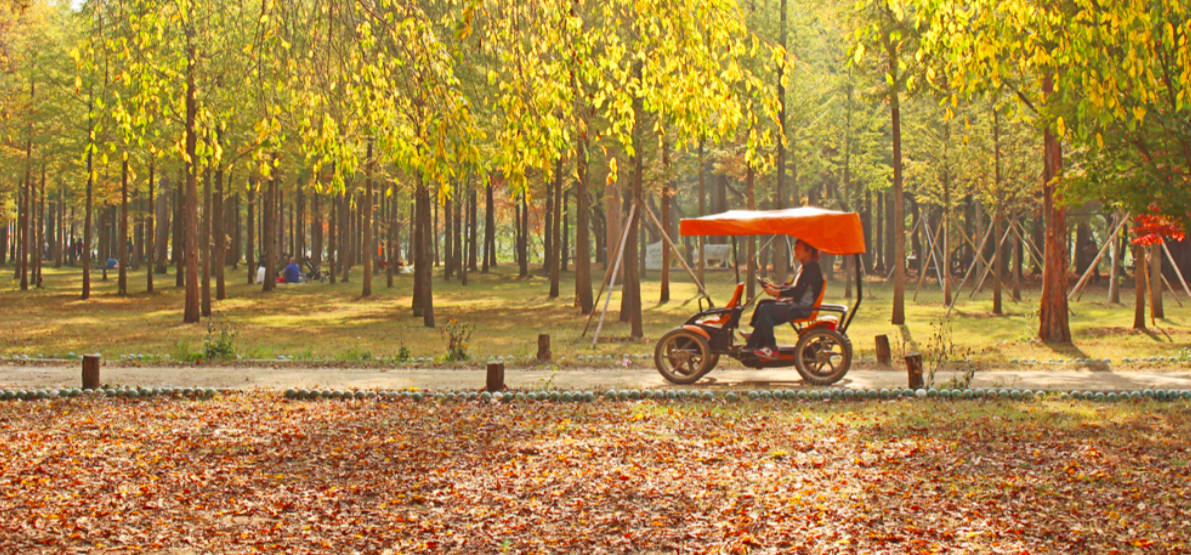 騎車遊覽南怡島 來源:南怡島官網