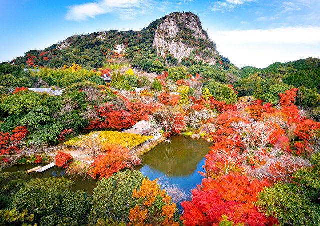 御船山樂園在秋季的夜晚還有全日本最大規模的紅葉點燈活動。(圖片取自www.rurubu.com)