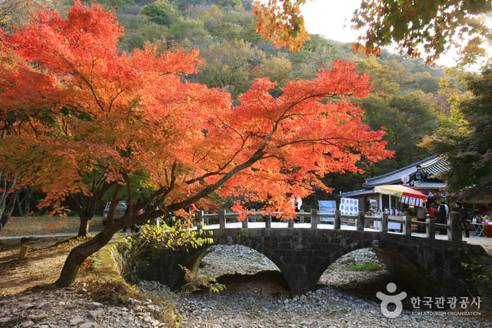 內藏寺 來源:韓國觀光旅遊網