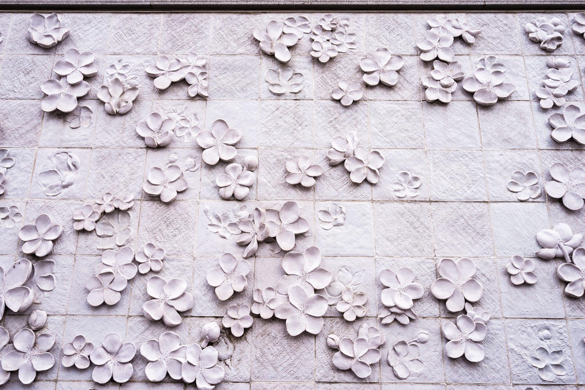 梨花女子大學,必拍梨花牆。照片取自:Flickr Wei-Te Wong