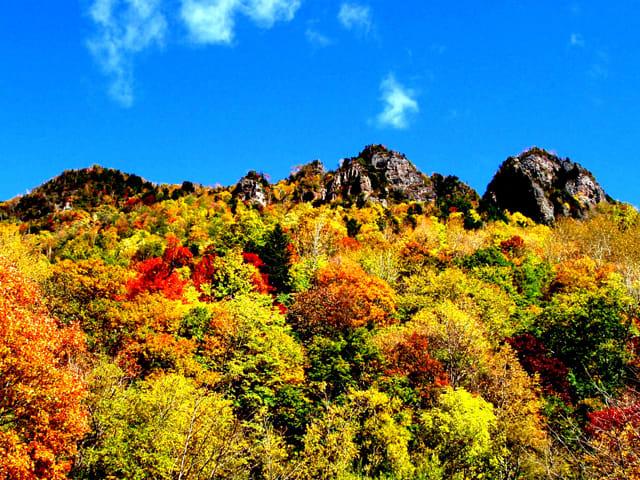 層雲峽紅黃綠交錯的美景。(圖片取自www.rurubu.com)