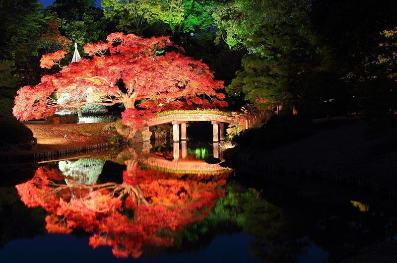 六義園(照片來源:Kakidai from Wikimedia Commons)https://goo.gl/ugjiWo