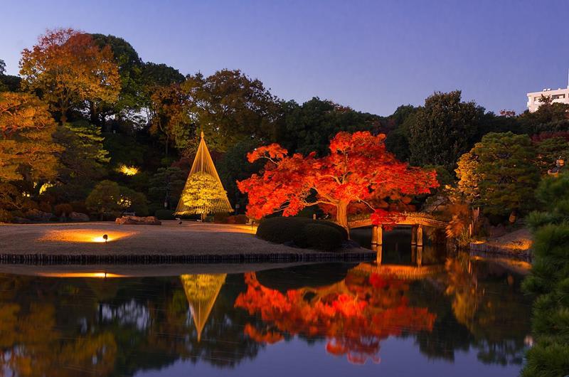 六義園(照片來源:東京都公園協会官網)https://goo.gl/w9srAi