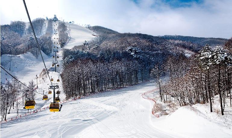 鳳凰城滑雪渡假村,圖片取自phoenixhnr.co.kr。