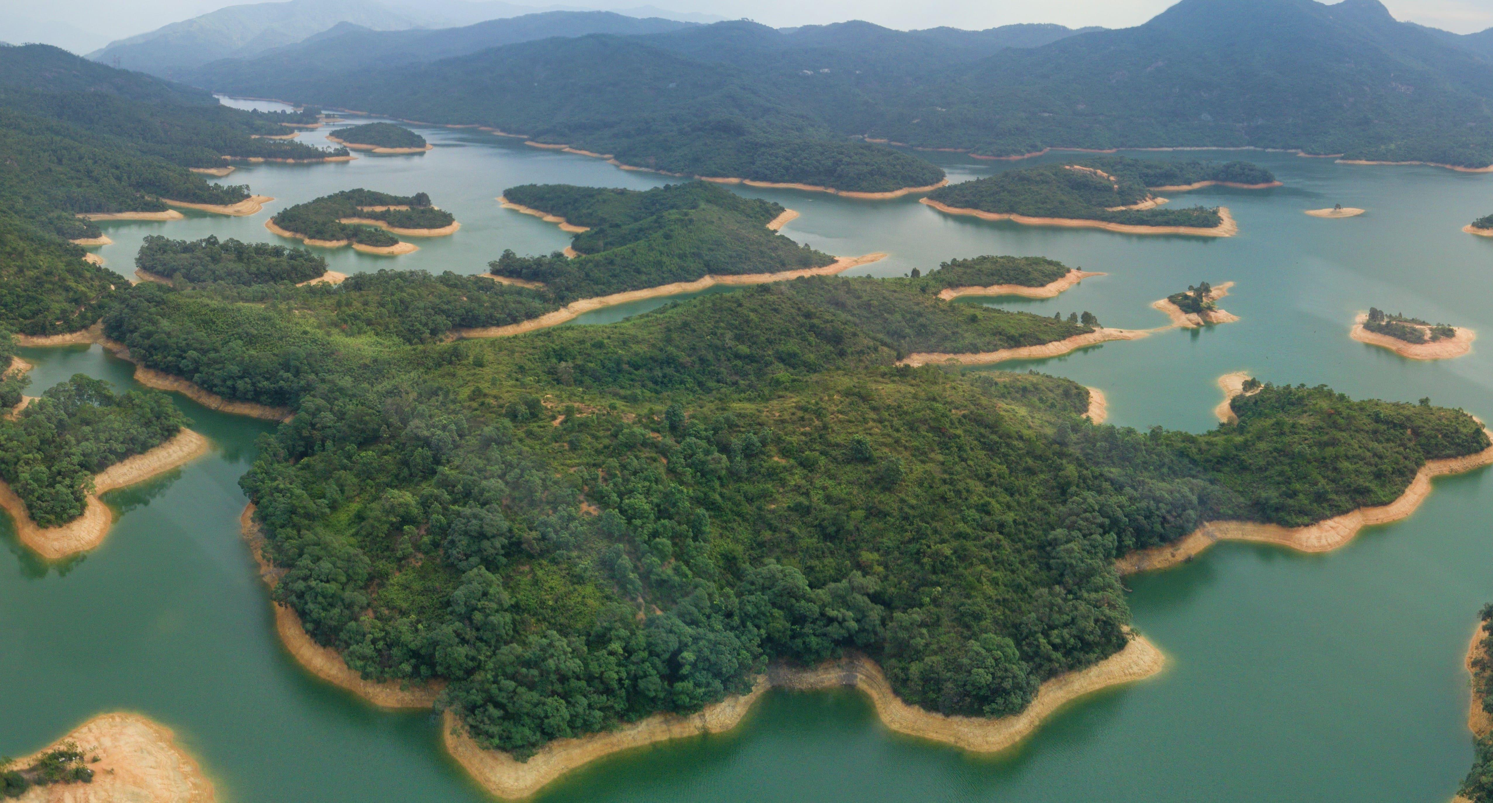 大欖涌水塘,圖片取自wikimedia。