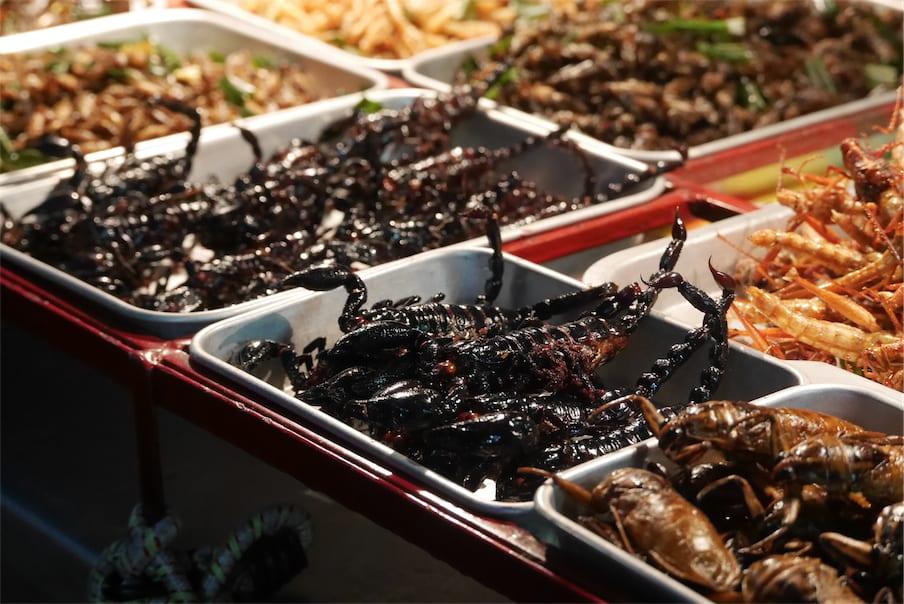 炸昆蟲,圖片取自www.thailandfans.com。