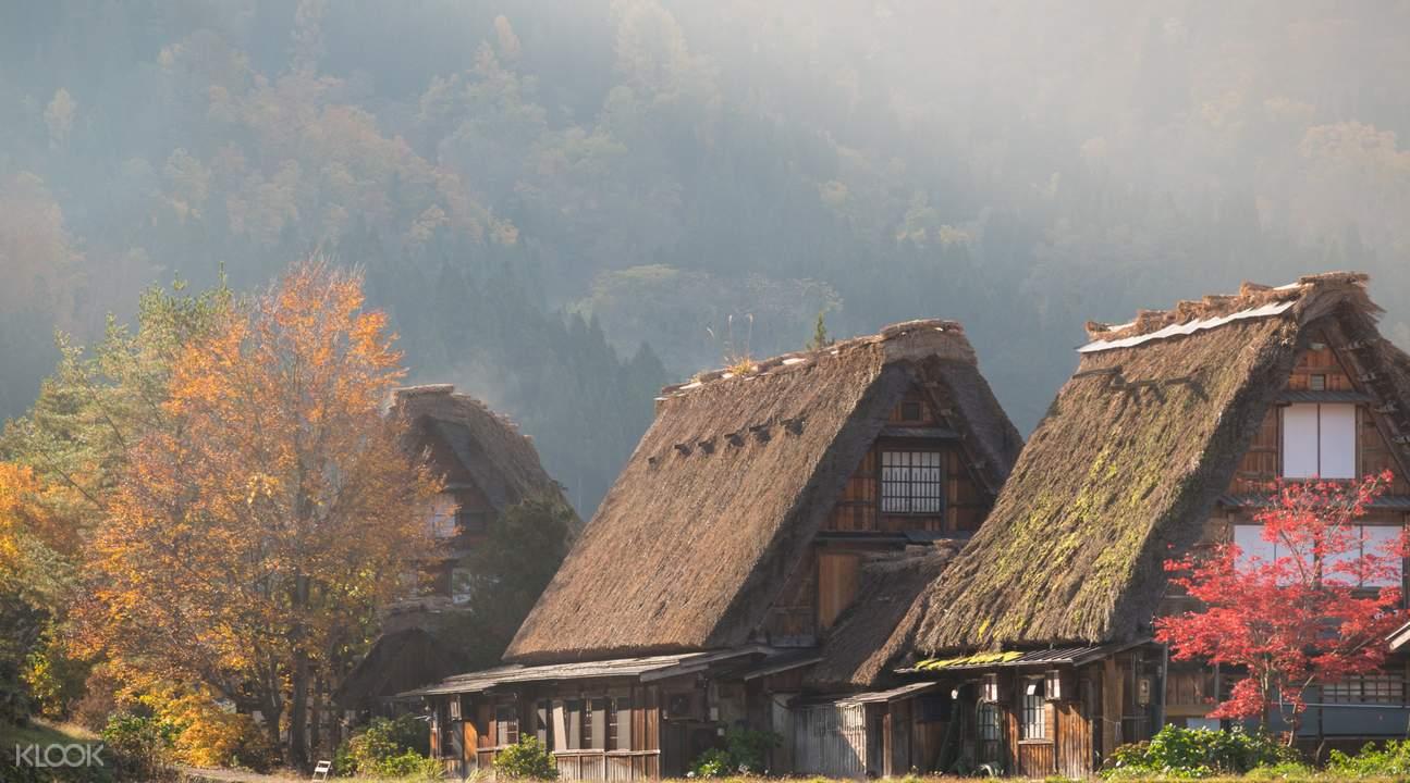 座落於山間平原的合掌造式的民宅,外觀是特殊的茅草人字形木屋頂