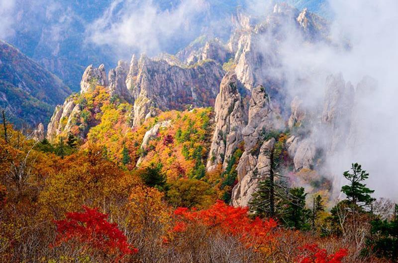 雪嶽山國家公園(照片來源:韓國觀光公社https://goo.gl/ZsQbQF)