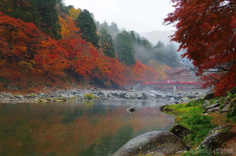 香嵐溪紅葉(照片來源:Hiroaki Kaneko via Wikimedia Commons)https://goo.gl/qfR4nW