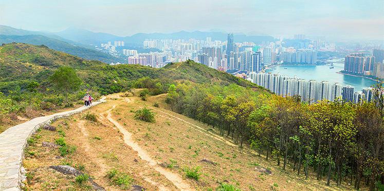 大帽山郊野公園,圖片取自香港旅遊局。