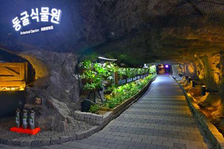 光明洞窟 來源:官網