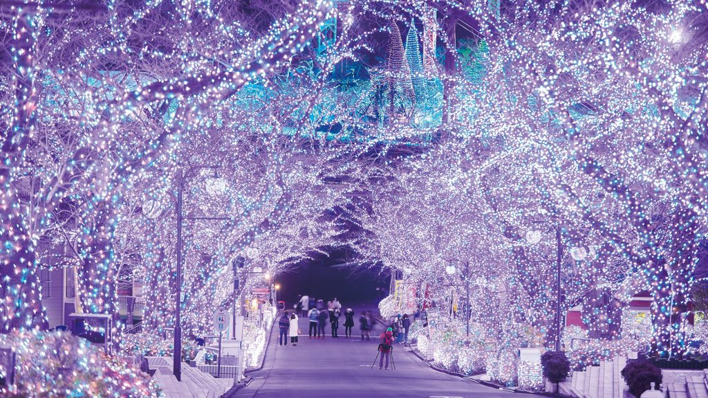 讀賣樂園的聖誕燈景 來源:讀賣樂園官網