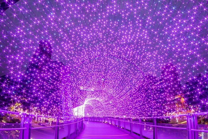 光彩奪目的燈飾隧道「紅粉星橋」(照片來源:2018新北市歡樂耶誕城活動官網)https://bit.ly/2Px2don
