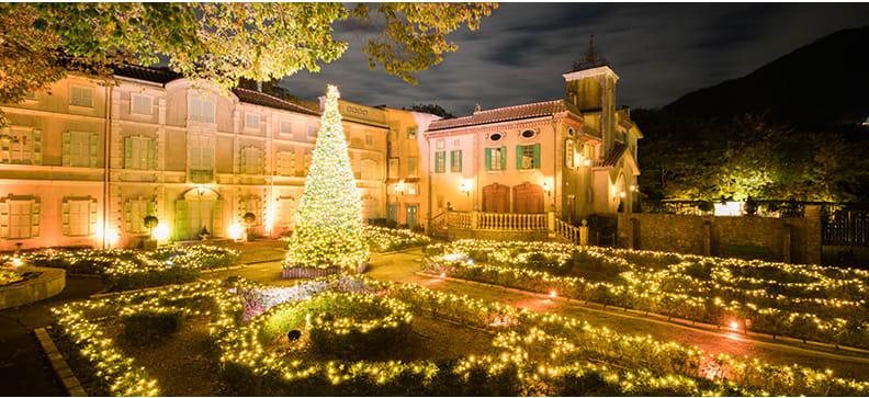 小王子,聖誕玫瑰花園,圖片取自www.tbs.co.jp。