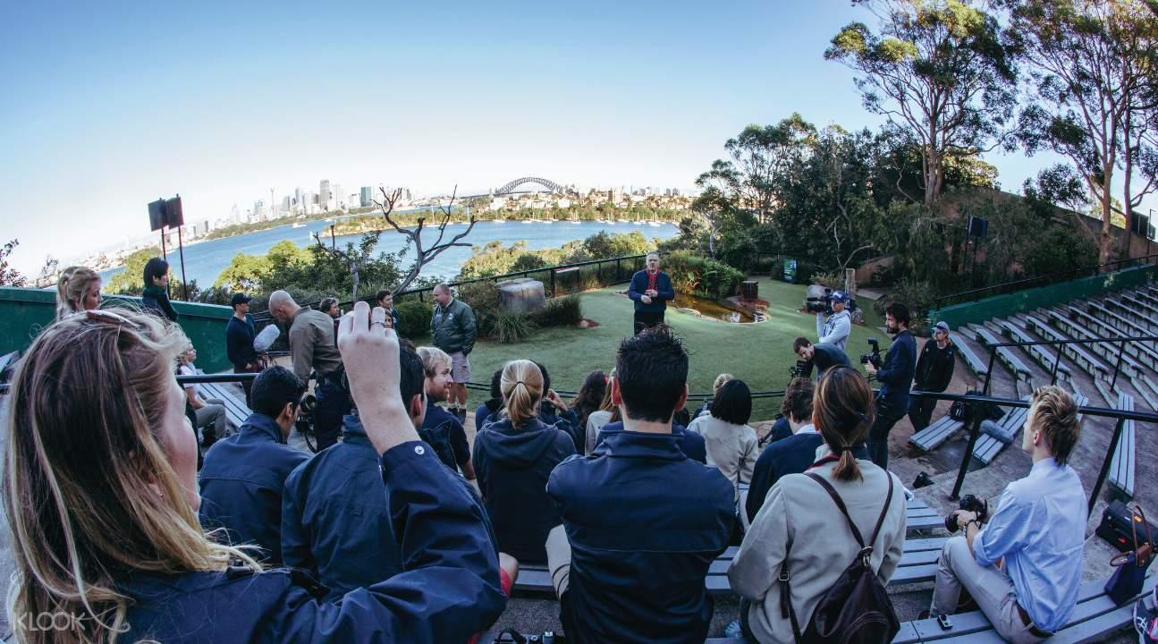 塔龍加動物園,照片來源:KLOOK官網