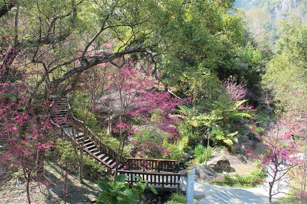 谷關溫泉公園 來源:官網