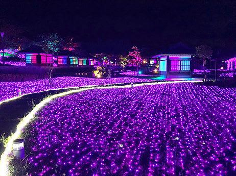 2018四重溪溫泉季以紫色、櫻花為燈飾主元素 來源:2018四重溪溫泉季