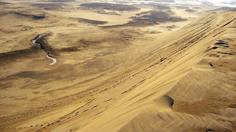 鳥取沙丘。