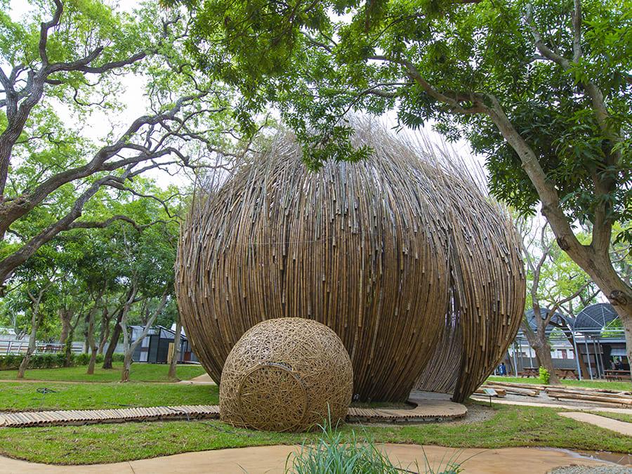 從天上掉下一顆種子被包覆在樹林中。相片來源:台中花博官方網站。