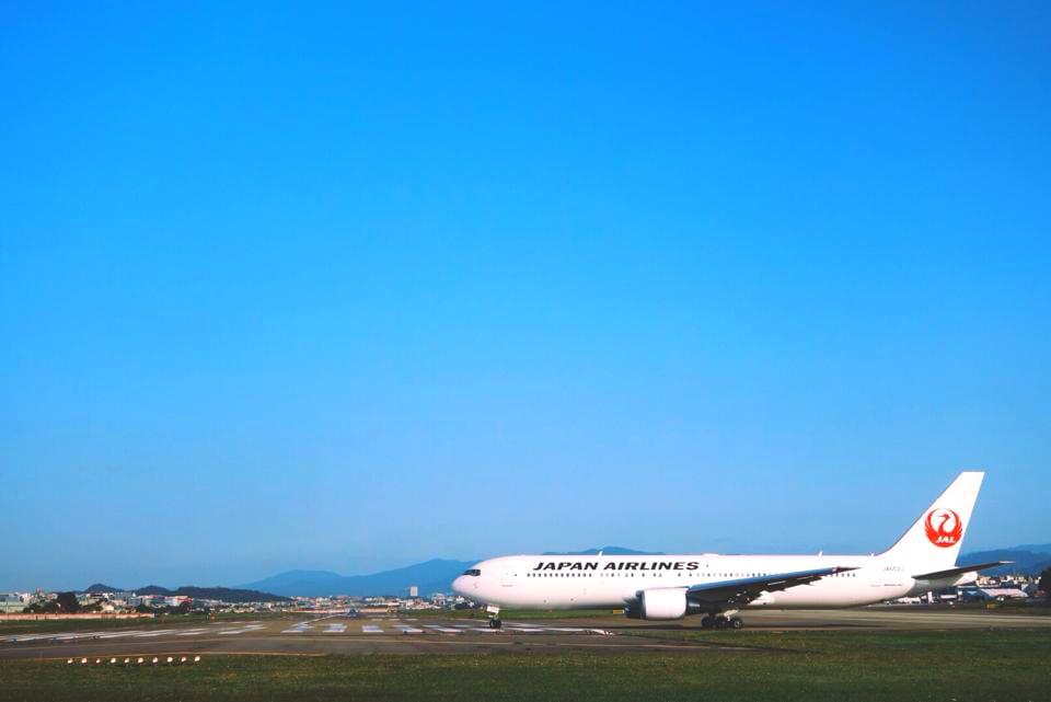 圖片取自日本航空FB粉絲團。
