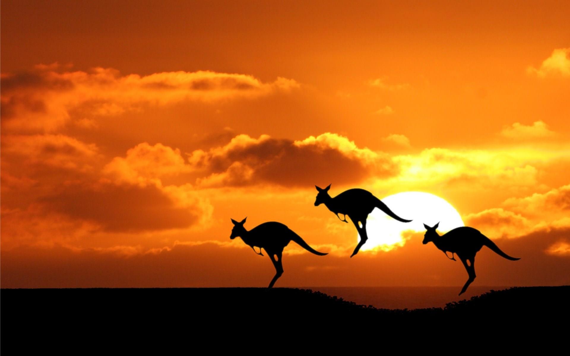 澳洲,圖片取自www.gauratravel.com.au。