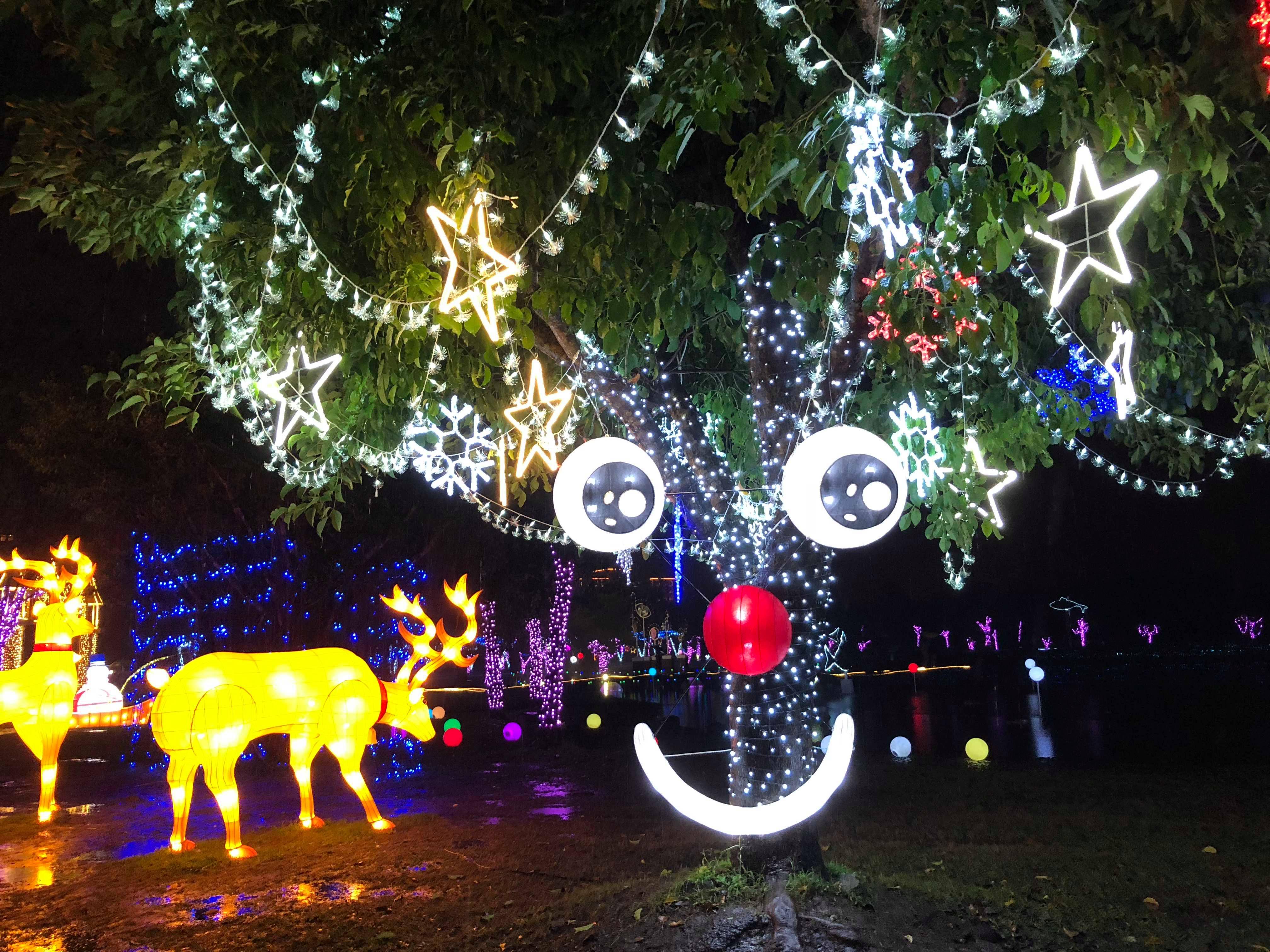 奇幻耶誕樹。圖片來自:本文作者KV