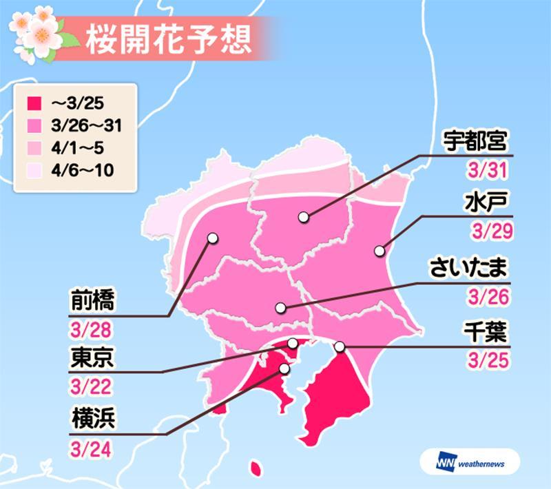 関東の開花予想(照片來源:日本Weathernews官網)https://goo.gl/bTdMrT
