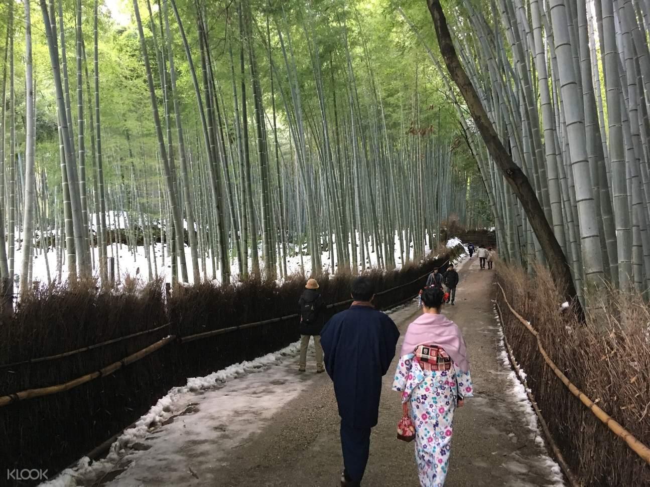 漫步嵯峨野的竹林小徑,感受風吹竹葉的天籟之音。