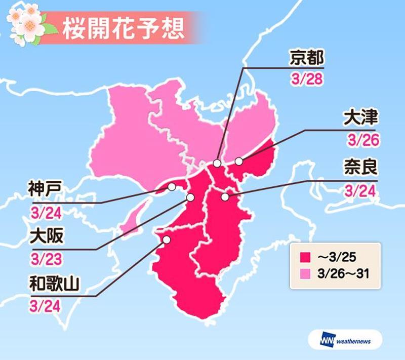 近畿地區地區櫻花開花預測(圖片來源:Weather Map官網)https://bit.ly/2QZYQDm