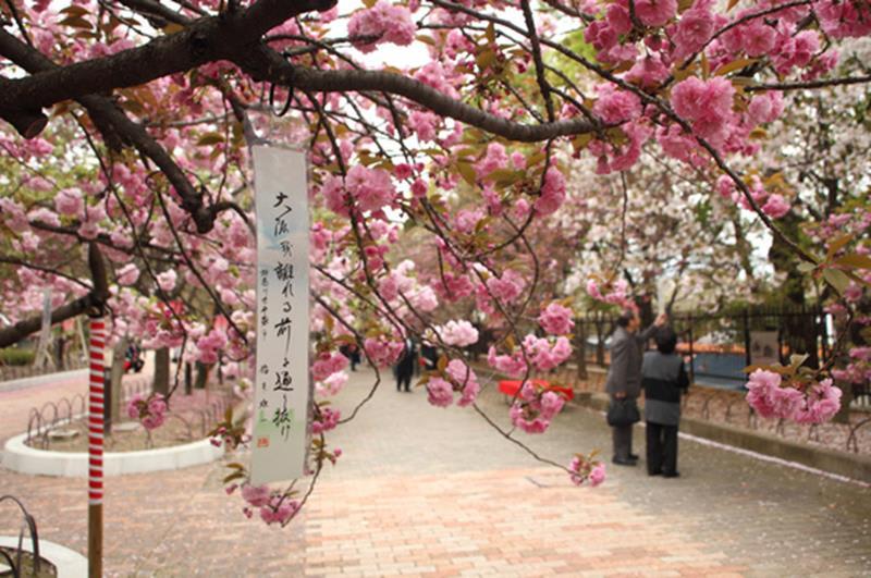 大阪造幣局(照片來源:大阪觀光局PHOTO LIBRARY)https://bit.ly/2RRLdup
