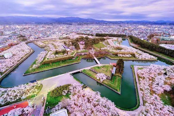 五角星形狀的標誌性賞櫻名勝「五稜郭公園」。(圖片取自gogonews.cc)