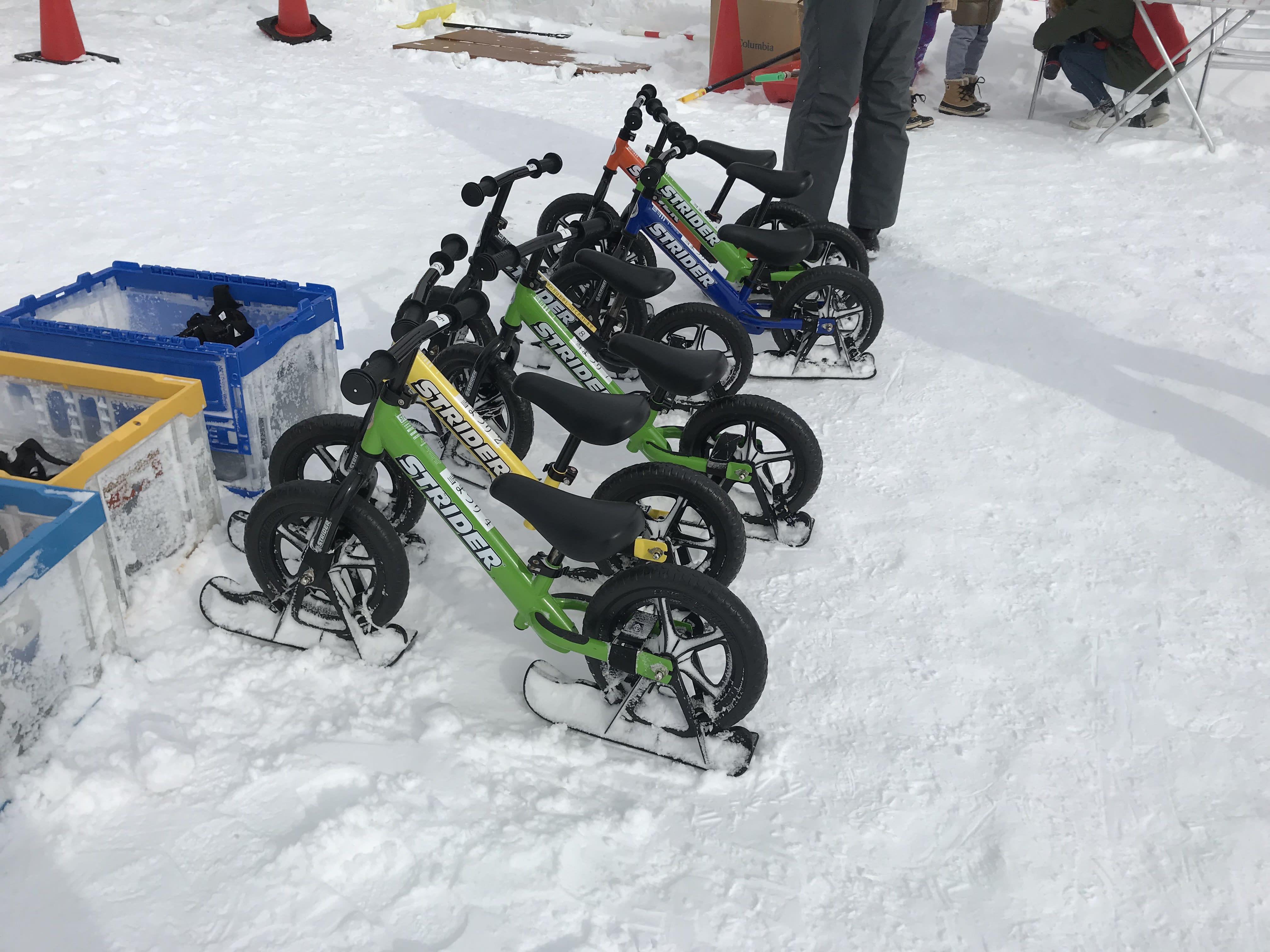 雪橇腳踏車,取自:Ann Shih。