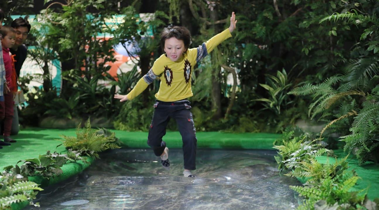 台北展覽,變變變!MOVE生物體驗展,神奇叢林。