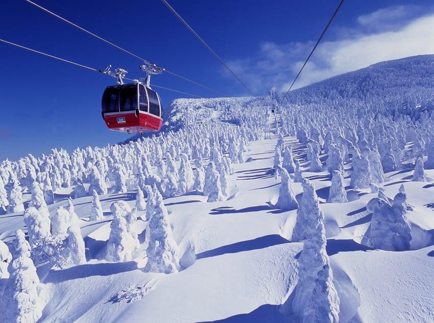 山形藏王樹冰,圖片取自www.tobujapantrip.com