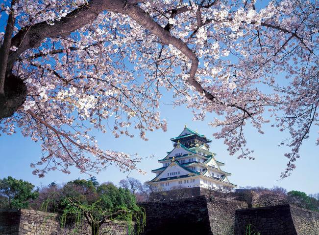 【2019櫻花季】四天三夜日本大阪櫻花自由行,交通、行程、景點...一次搞定!