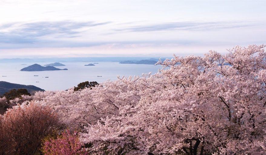 紫雲出山。(圖片取自hiroron-affilidream.com)