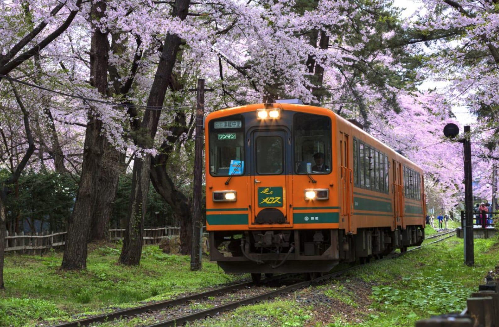 設在公園中的無人車站,被美麗的櫻花包圍。(圖片取自zh-tw.zekkeijapan.com)