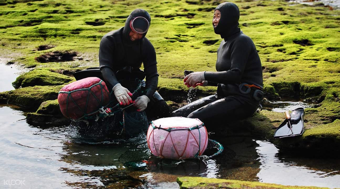 堅毅的海女從大海徒手捕捉新鮮海鮮