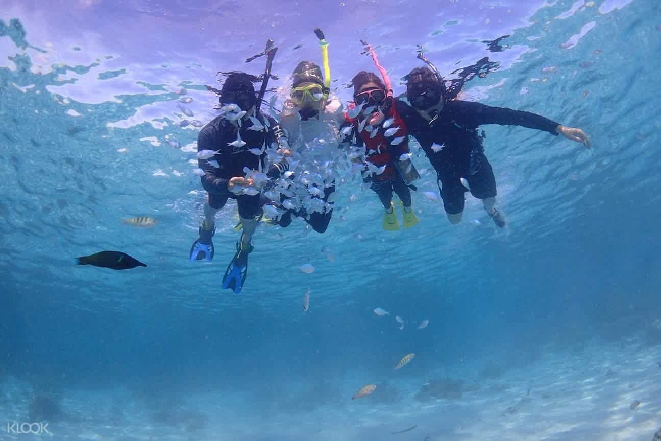 浮潛於美里的海底世界中,與魚群一起悠遊!