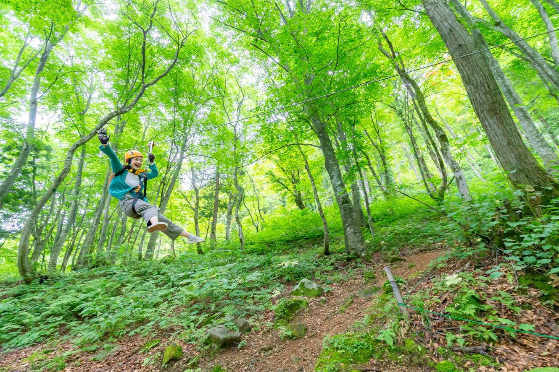 湯澤高原全景公園,照片來自湯澤高原全景公園官網