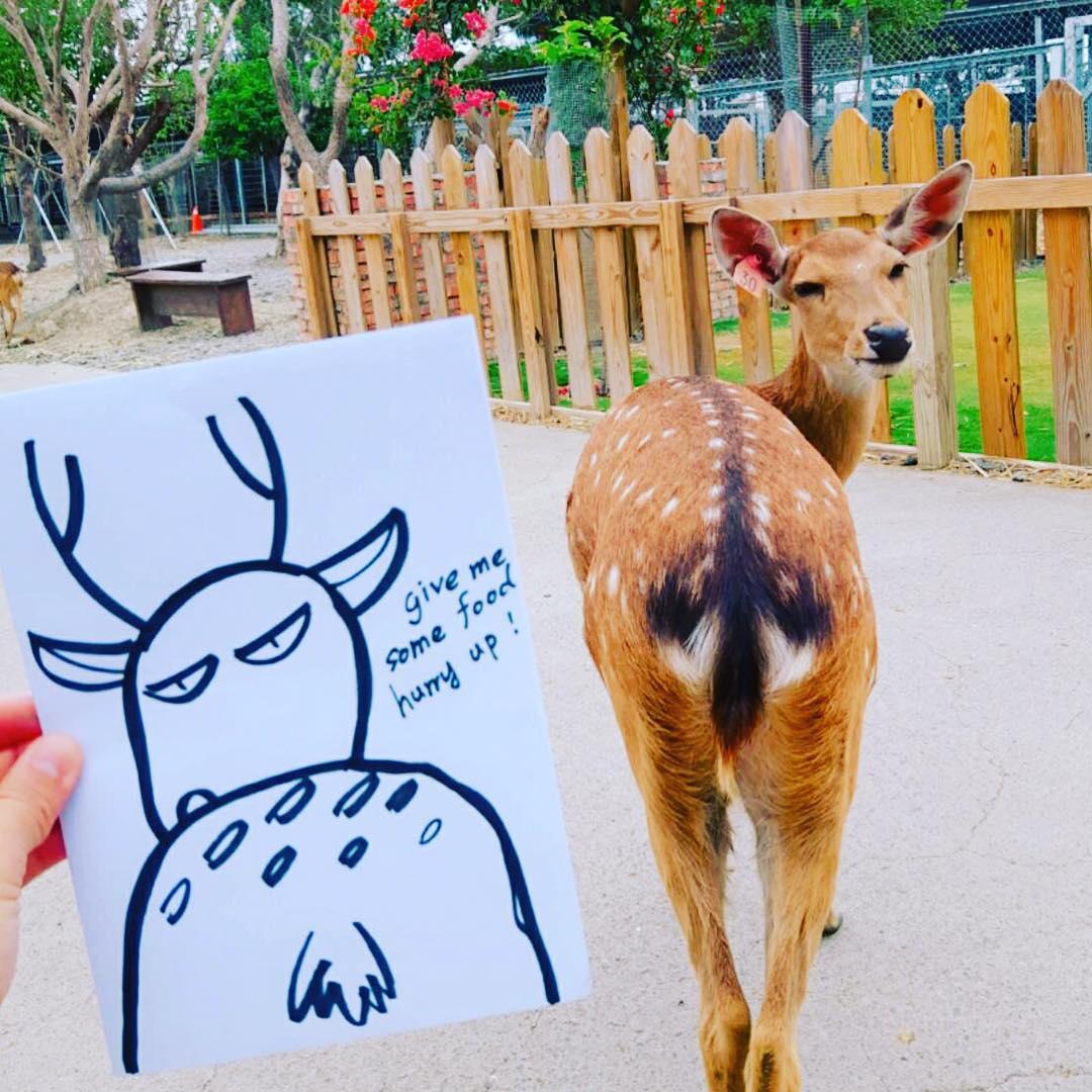 圖片取自鹿境 Paradise Of Deer官方FB粉絲團。
