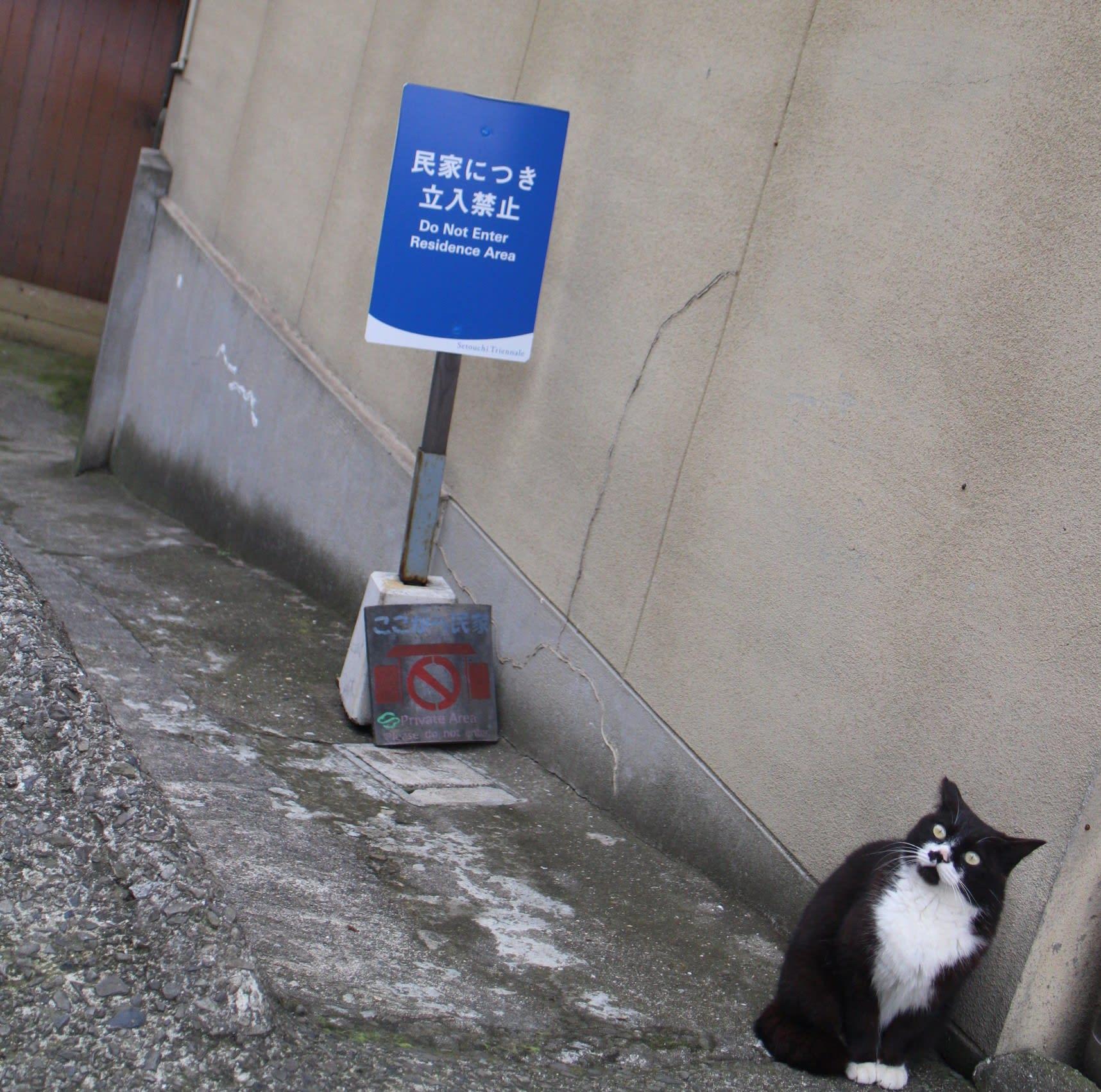 男木島(貓島)|圖片來源:Vanessa