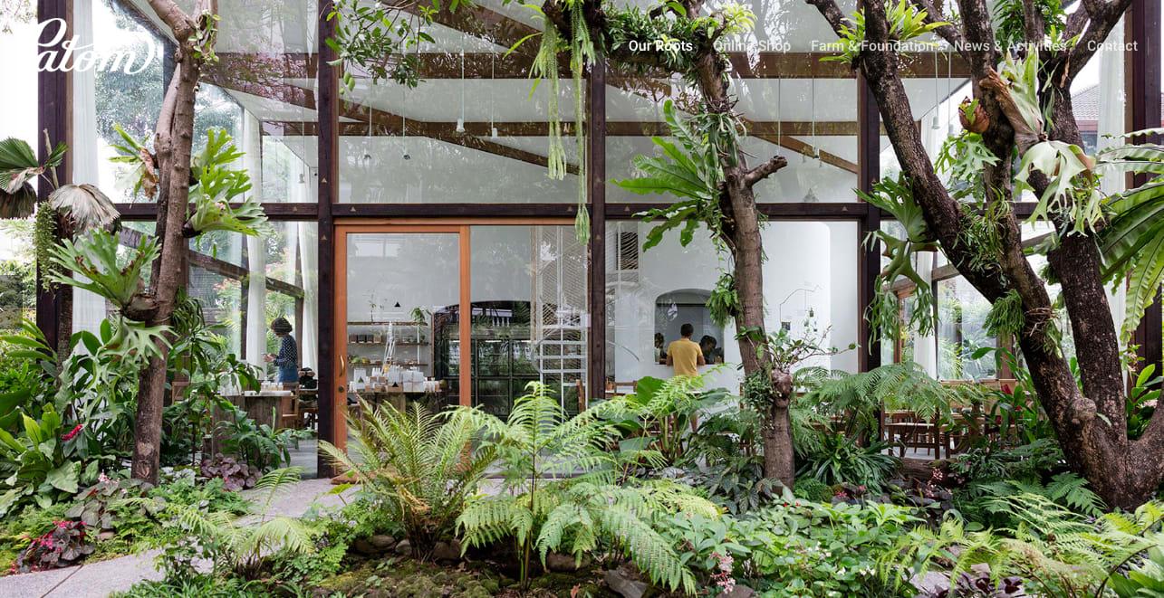 在曼谷非常少見以溫室為概念的咖啡店|PC:Patom Organic Living 官網