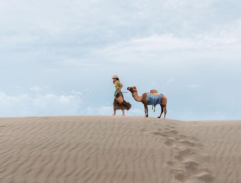 觀音草漯沙丘1 1