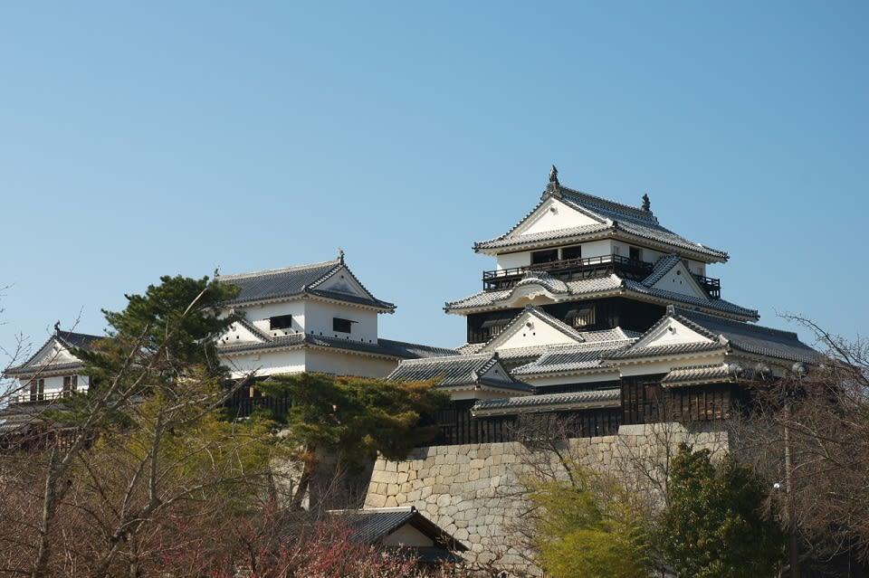 與和歌山城、姬路城一樣是「連立式平山城」的松山城。