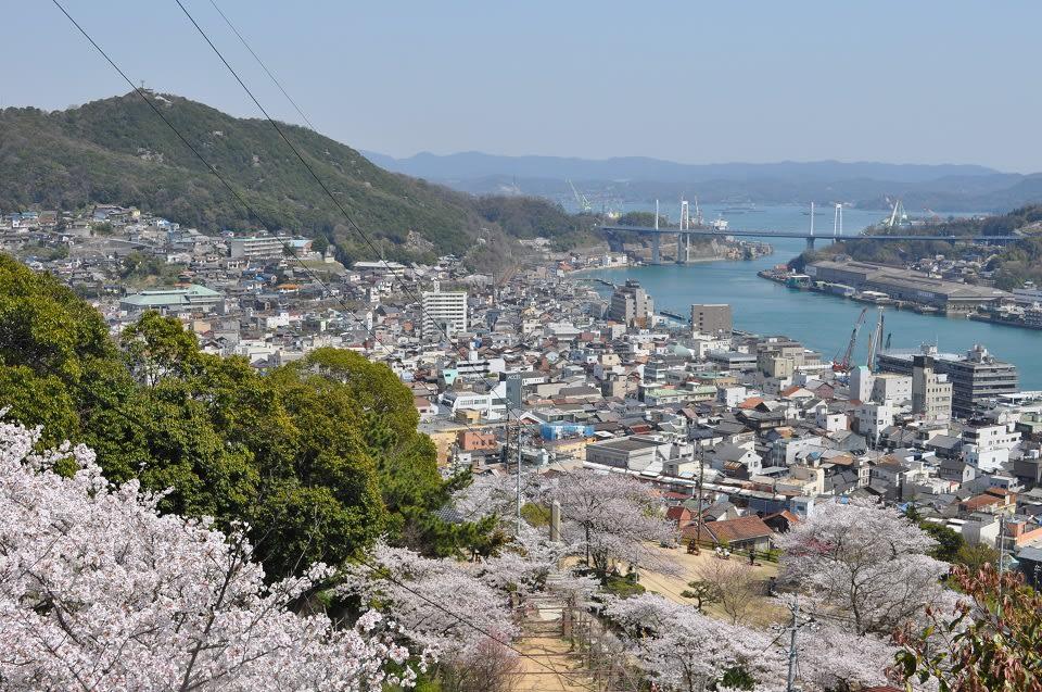 從千光寺公園可以眺望尾道市街、海峽和大橋。