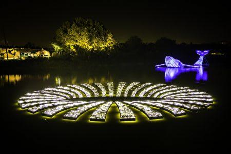 月津港燈節 鯨魚